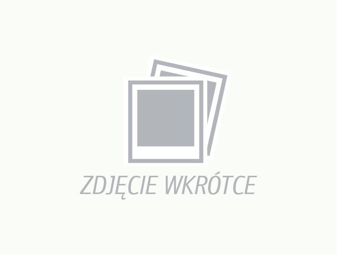 Róża WHITE DECUMBA 'Hanwidec'