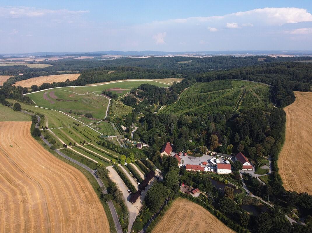 arboretum w wojsławicach panorama