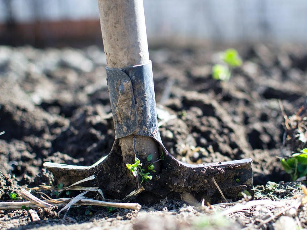 sadzenie łopata ziemia
