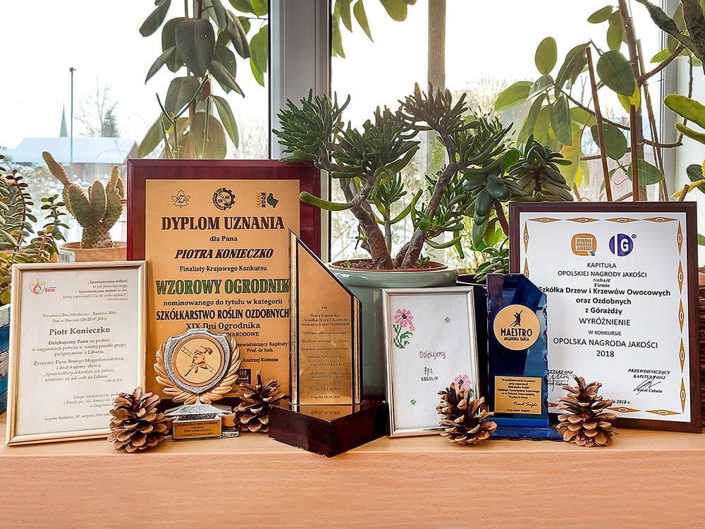 nagrody i wyróżnienia szkółki konieczko