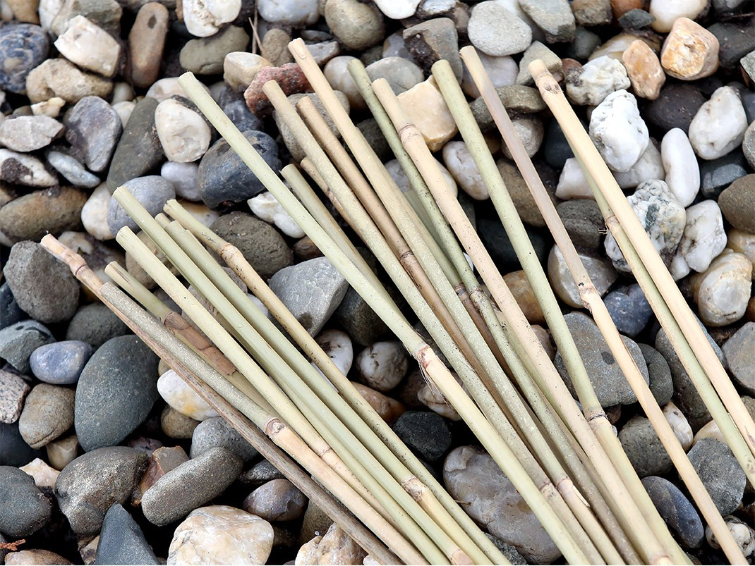 Prace w ogrodzie w maju - bambusowe paliki